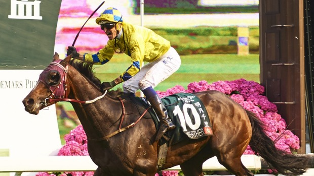 1493259424183 - Kiwi-bred Werther tackles technology in rich Hong Kong feature