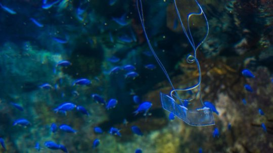 180426102906 1 540x360 1 - Transparent eel-like soft robot can swim silently underwater