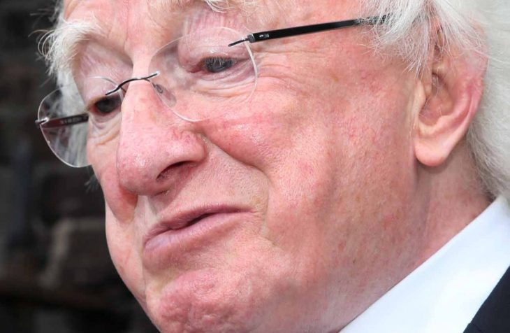 river 142 730x476 - Poll: Should Michael D Higgins actively campaign if he wants to continue as President?